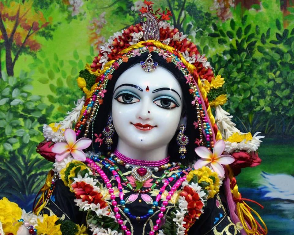 ISKCON Nasik Deity Darshan 03 Feb 2016 (8)