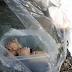 ごみ袋の口を固く結んで捨てた人間の残酷さ…生後間もない子猫4匹が一命を取りとめた4