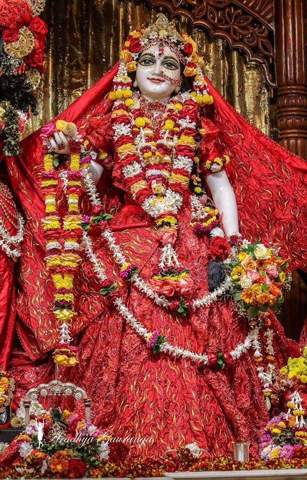ISKCON Mayapur Deity Darshan 06 Jan 2015 (21)
