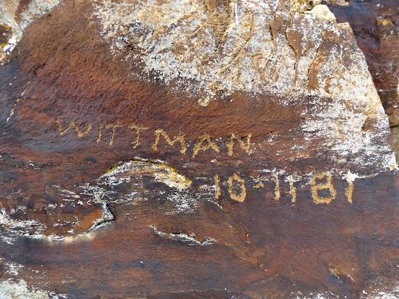 Wittman 10/11/1881