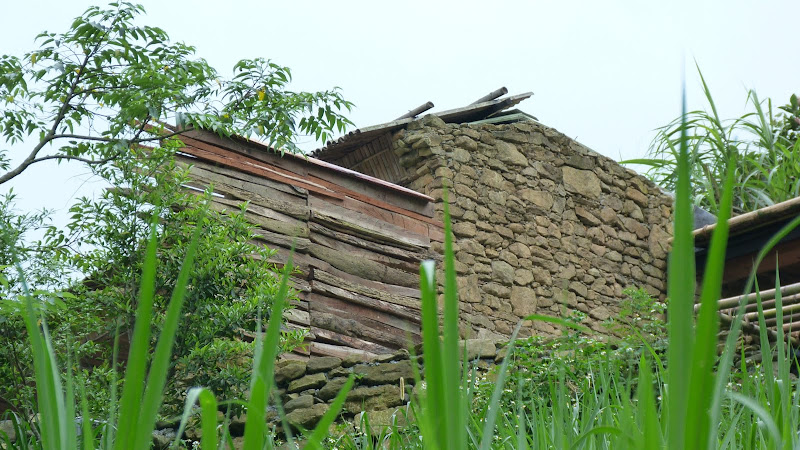 TAIWAN A cote de Luoding, Yilan county - P1130584.JPG
