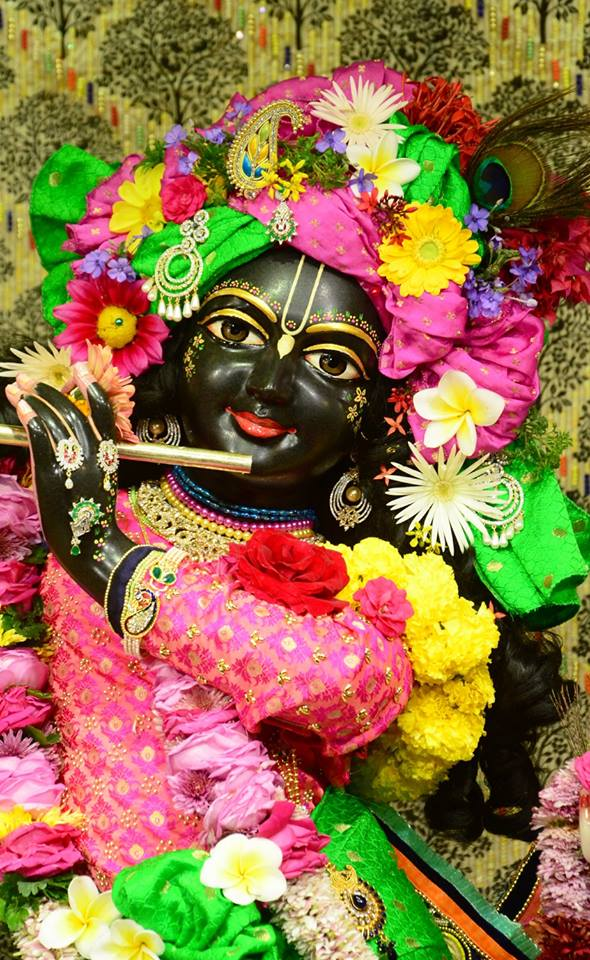 ISKCON GEV Deity Darshan 09 Jan 2017 (9)