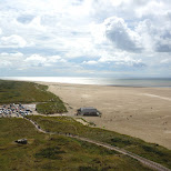 Texel northern beach from the lighthouse in Texel, Noord Holland, Netherlands