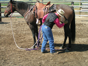Photo: Now...how to get this ring-loop off her hind foot? Take your time. Pet down the leg. Keep the rope between you and the horse.