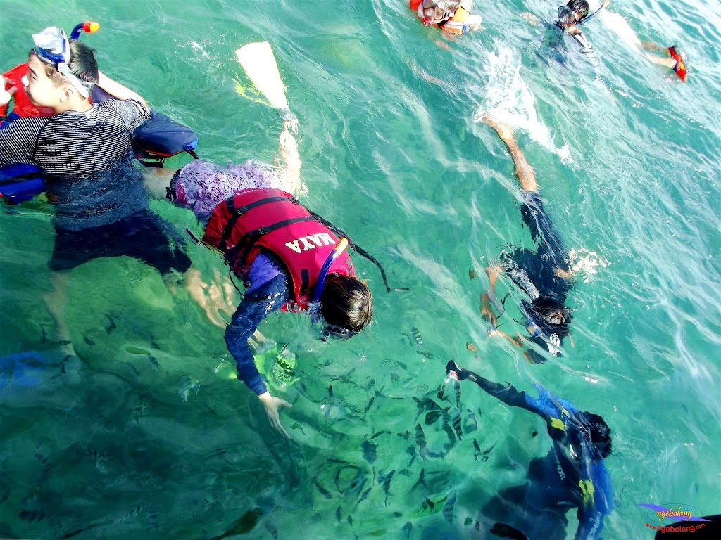 family trip pulau pari 140716 Fuji 072