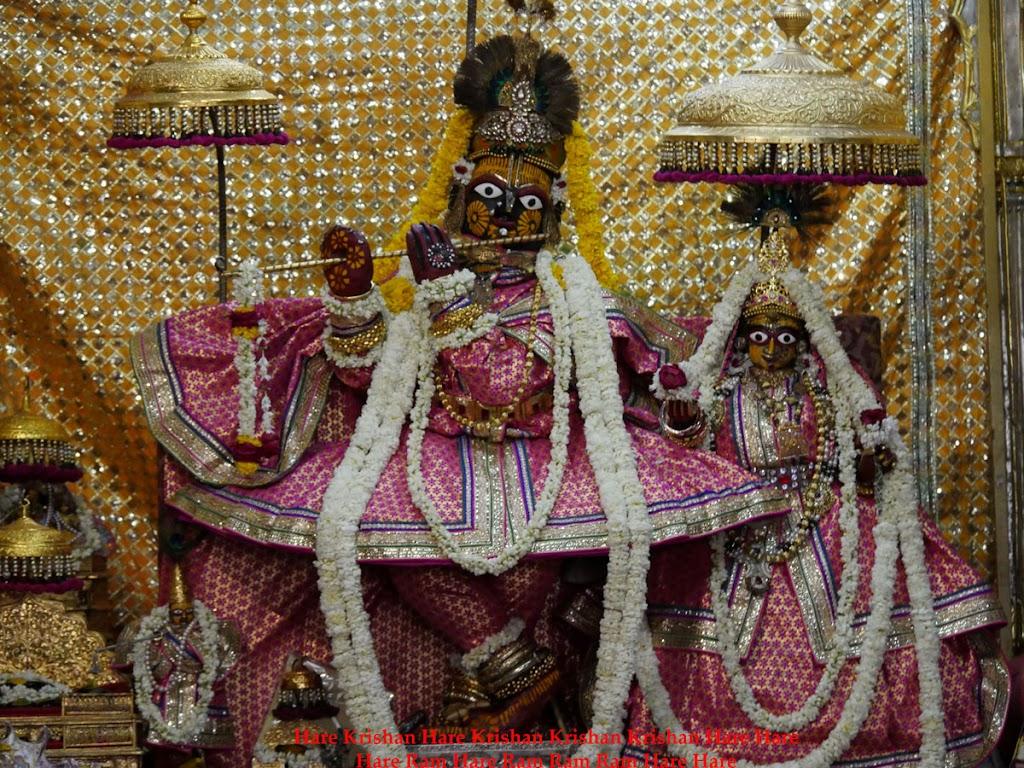 Radha Govind Devji Deity Darshan 30 Mar 2016  (16)