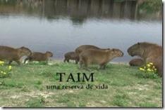 reserva-do-taim