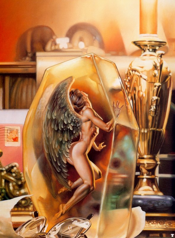 Elegant Angel, Angels 4
