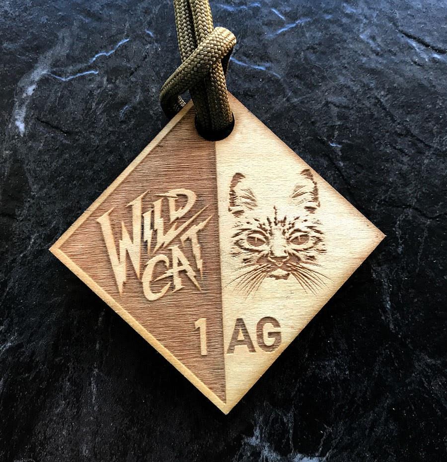 WCAG1