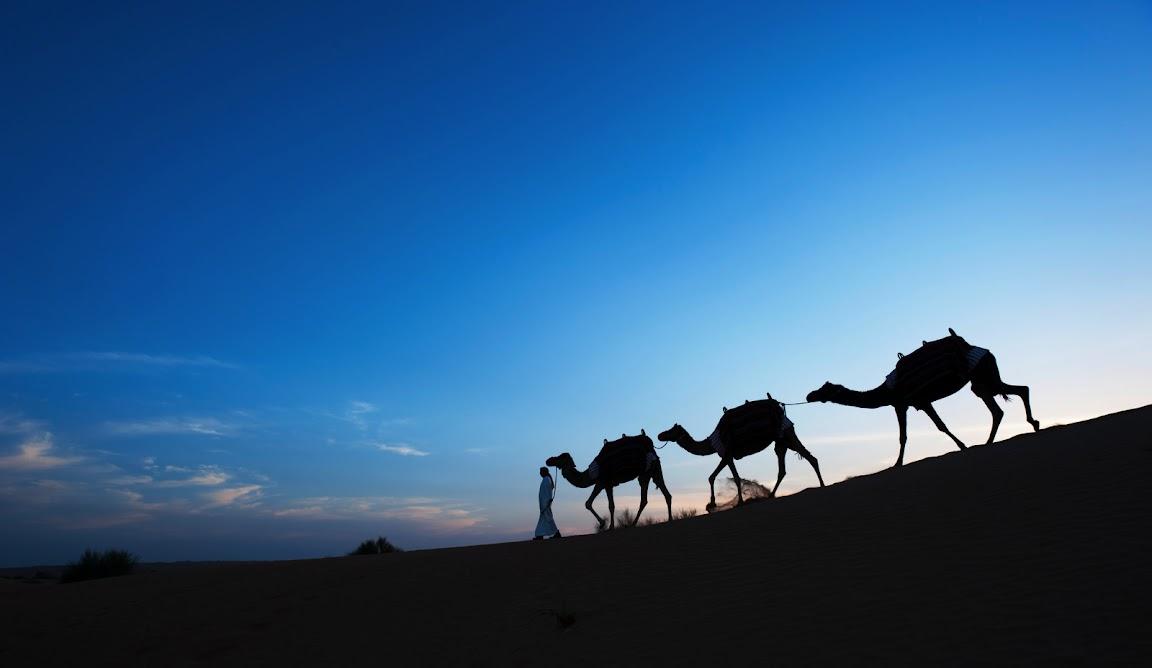 Al Maha Desert Resort in Dubai