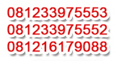 Contact Dealer Nissan Surabaya