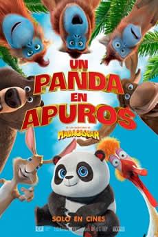 Capa Um Panda em Apuros – Torrent 2019 Dublado 1080p Download