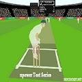 Play nPower Test cricket game