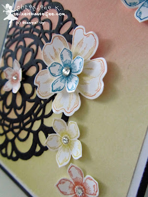 stampin up, paper doily, flower shop, petite petals, zierdeckchen, watercolor wonder