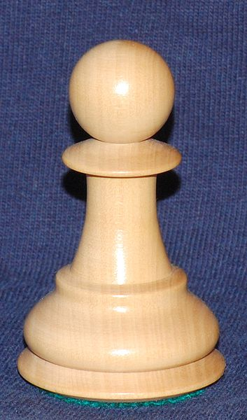 Image result for picture of a chess pawn