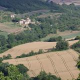 Vallon des Fouix. Les Hautes-Courennes, Saint-Martin-de-Castillon (Vaucluse), 14 juin 2015. Photo : J.-M. Gayman