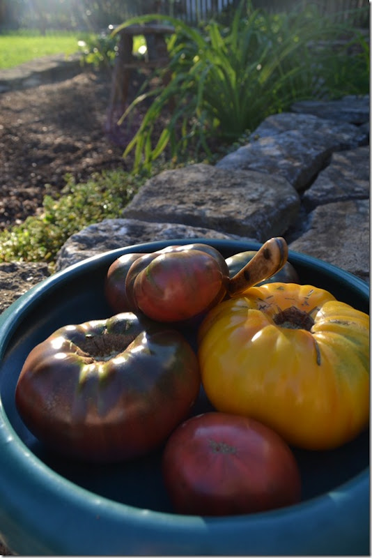 Heirloom Tomatoes | Lisa Porter | The Lisa Porter Collection