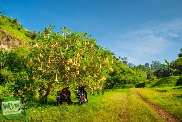 pemandangan indah menuju Curug Bugbrug, Bandung Barat