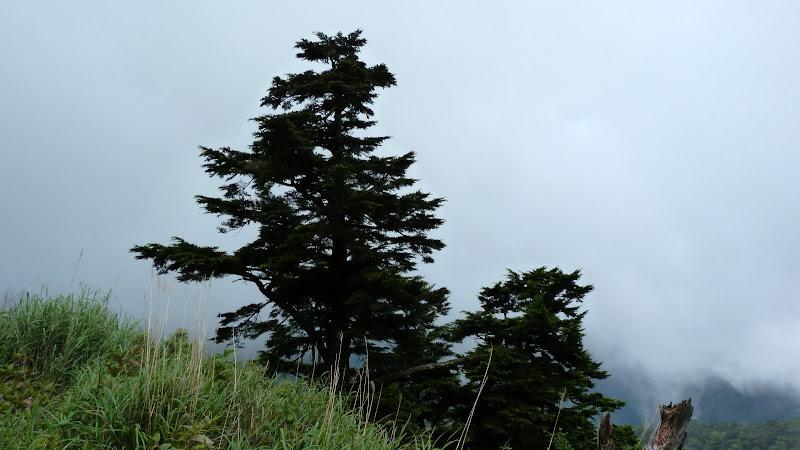 De Puli a Wuling 3275 metres d altitude J 9 - P1160544.JPG