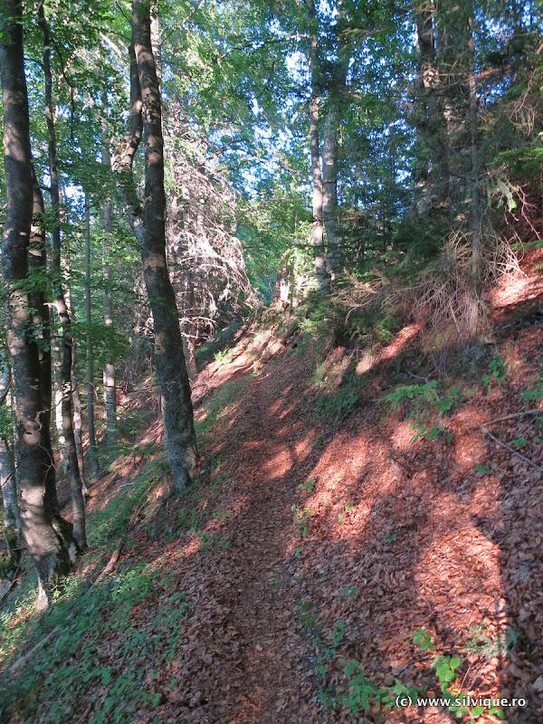 2015.08.09 – Apuseni – Parcurgerea traseului Maratonului Apuseni