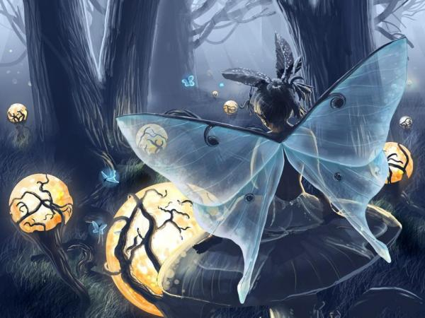 Fairy Of Light, Fairies 3