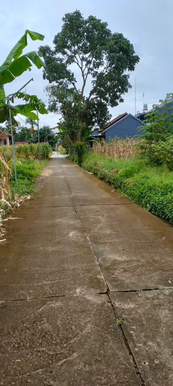 Tanah Murah strategis seputaran Pendowoharjo Sleman Dekat Resto Jejamuran