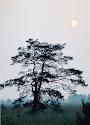 zonsverduistering 20030531 6.12 uur.jpg