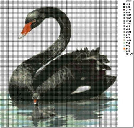 cisne negro punto de cruz  1