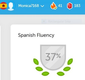 spanish 37%