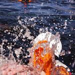 01.05.12 Tartu Kevadpäevad 2012 - Karsumm - AS20120501TKP_V087.JPG