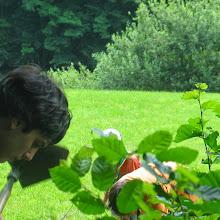 Taborjenje, Lahinja 2006 1.del - IMG_4278.JPG
