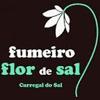 FumeiroFlorSal (1).jpg