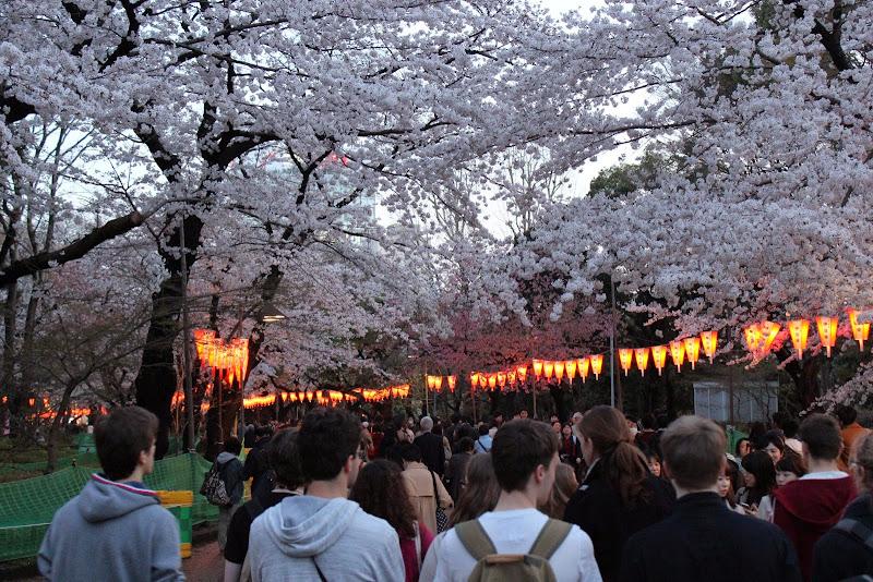 2014 Japan - Dag 1 - marjolein-IMG_0187-0114.JPG
