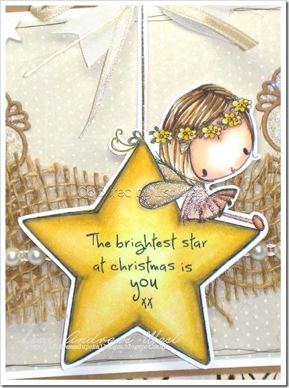 Christmas Star (3)