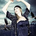 Gypsy-Fly-Free2-ev36.jpg