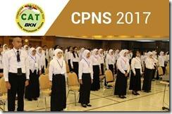 CPNS 2017 (1)