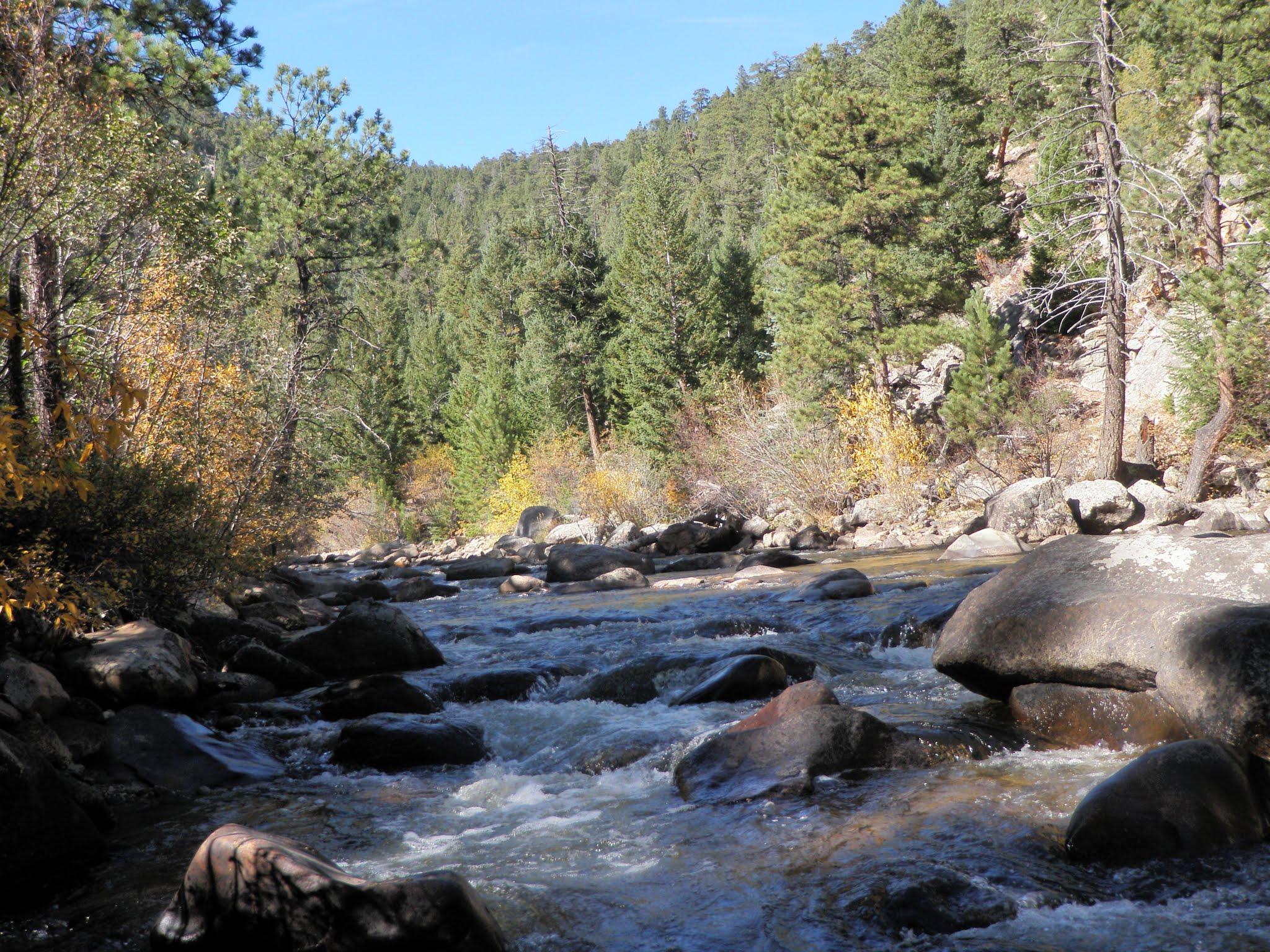 South boulder creek 10 16 2015 dave weller 39 s fly for Boulder creek fishing