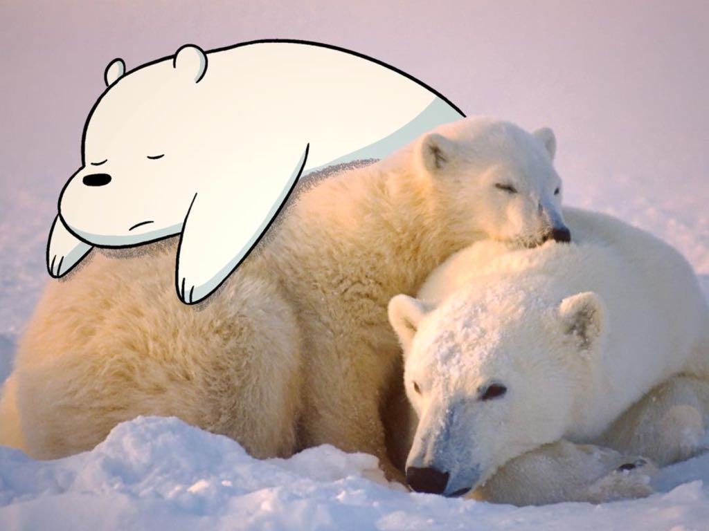 Ice Bear made with Sketches