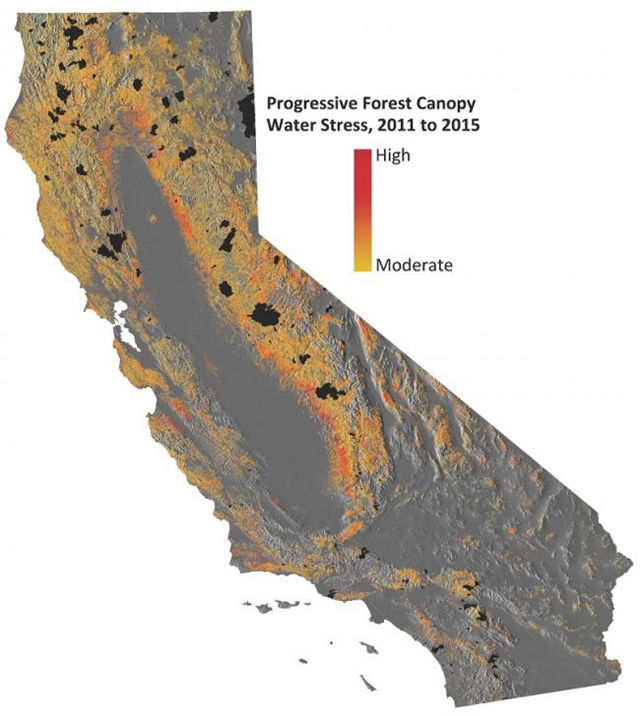 Progressive forest canopy water stress in California, 2011-2015. Graphic: Gregory Asner / Carnegie Institute for Science