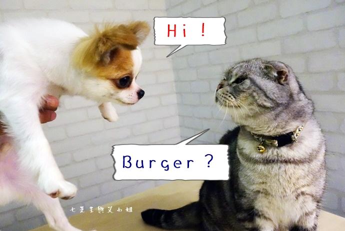7 Hi Burger