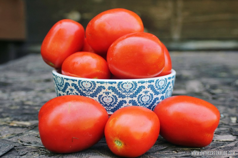 Bowl of Roma Tomatoes