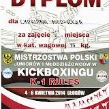 Mistrzostwa Polski Juniorów i Młodzieżowców w Kickboxingu, 2014-04-06