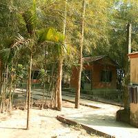 [DSTV-023] Khu phía cuối vườn Lâm tì ni - TVCN (cổng 2)