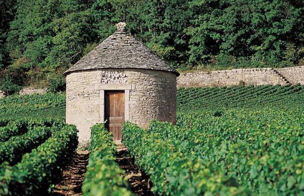 Cabane de vigneron, en ruine ou entretenue