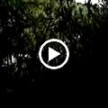 Országos Amatőr Kajak-Kenu Túrabajnokság videók Ha nem indul el automatikusan, a videók megtekintéséhez válaszd a Picasa menüt!