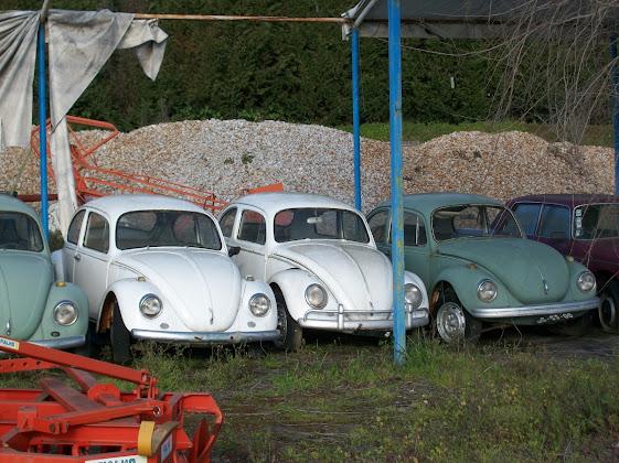 Otro cacharro mas jaja VW Carocha 100_1827