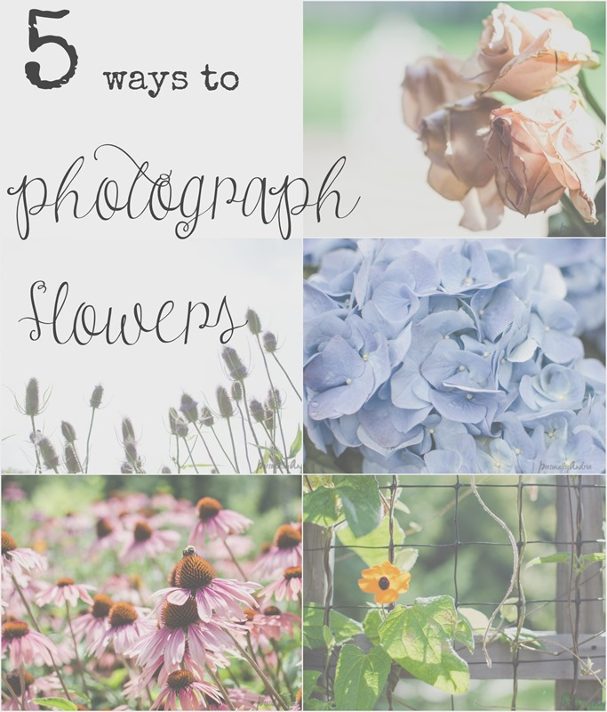 5 ways to photograph flowers