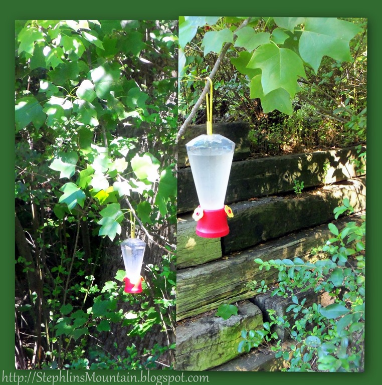 Handwashing Crochet Blanket and Feeding Hummingbirds-001