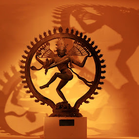 Untamed Shadows! by Balaji Mohanam - Artistic Objects Other Objects