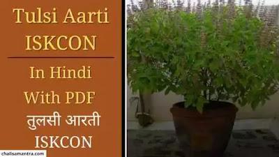 Tulsi Aarti ISKCON Lyrics In Hindi With PDF